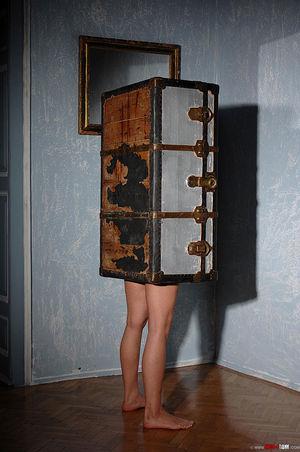Упаковали в специальный чемодан с дыркой под фаллоимитатор