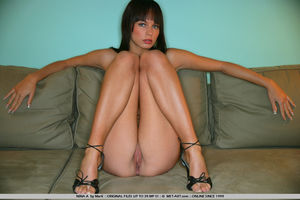 Обнаженная брюнетка широко раздвигает ноги на диване 14 фото