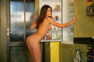 Брюнетка позирует нагишом возле разной кухонной утвари 9 фото