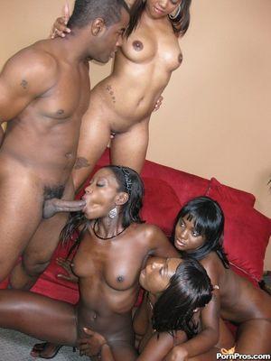 Черный парень долбит дырочки классных негритянок и поливает их спермой 3 фото