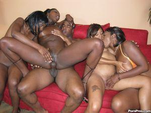 Черный парень долбит дырочки классных негритянок и поливает их спермой 8 фото