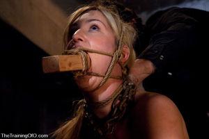 Грубо трахнул в рот связанную девушку 4 фото